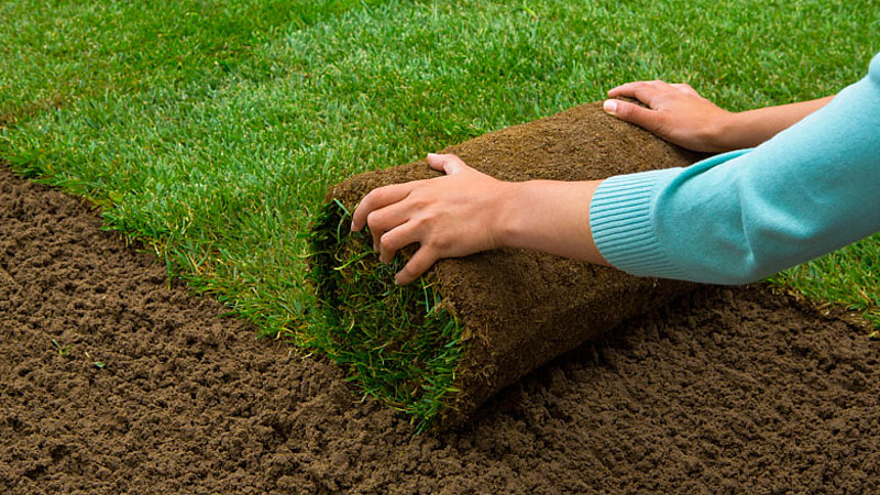 Tegels Voor Tuin : Planten in plaats van tegels: de voordelen van een groene tuin