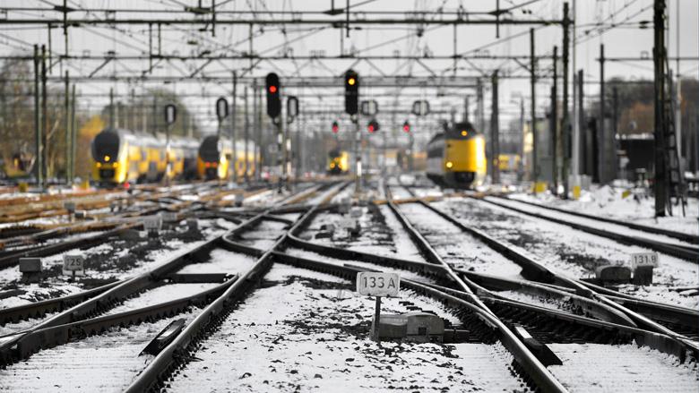 Aantal vertragingen door dieren op het spoor neemt af