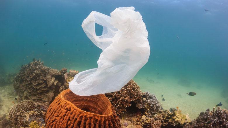 Grote hoeveelheden plastic in Noordelijke IJszee