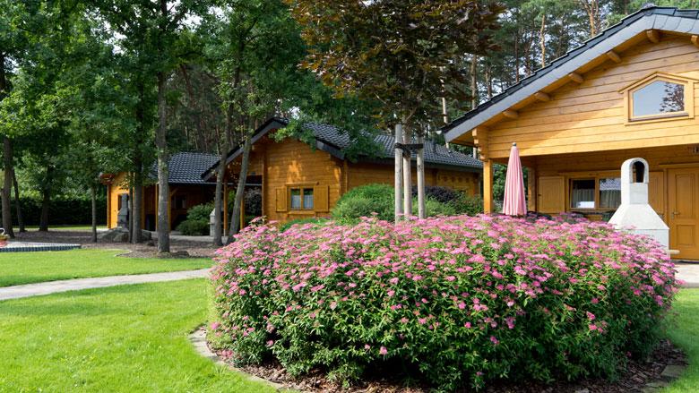 Kan ik deze zomer een vakantiehuis met vrienden of familie boeken?