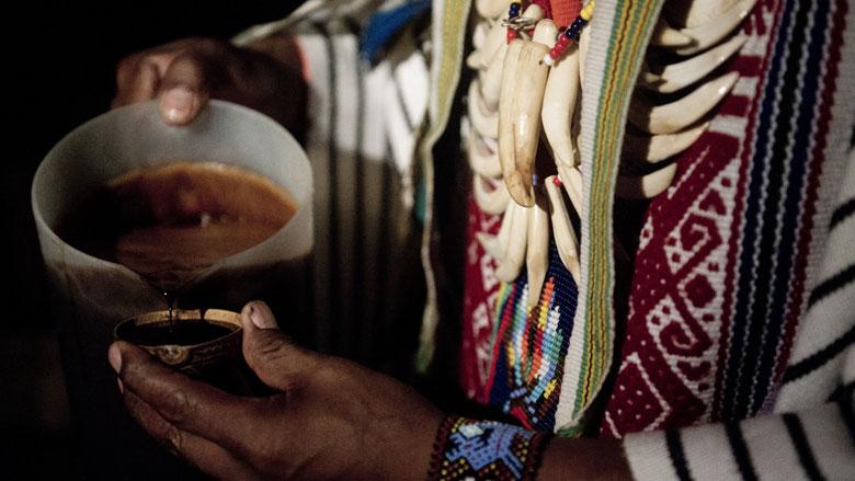 'Werkzame stof in hallucinogene drank ayahuasca niet levensbedreigend'