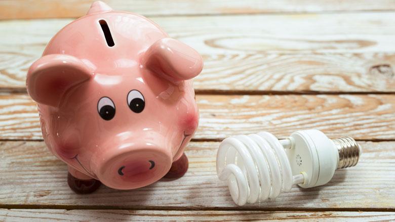 'Burgers en bedrijven betalen onnodig veel aan energierekening'