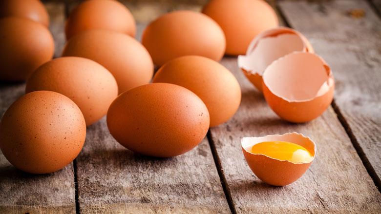 Kippenboeren spannen hoger beroep aan om fipronilcrisis