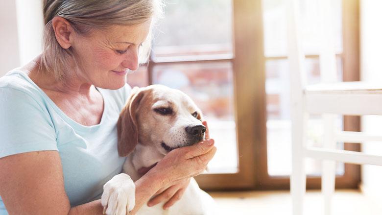 Verdeeldheid over financiële steun aan minima met huisdieren