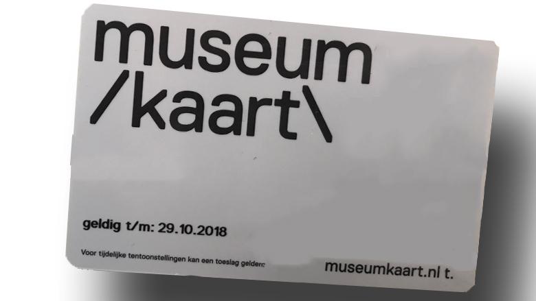 Europees Parlement maakt 2 miljoen euro vrij voor EU-museumkaart