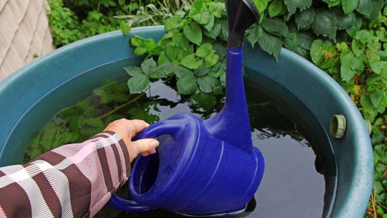 Water opvangen voor de plantjes, maar ook voor... de wasmachine